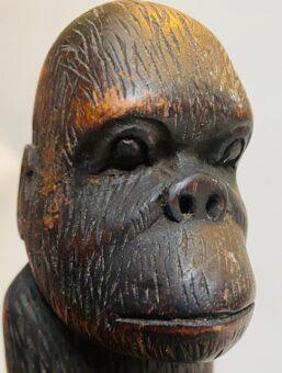 gorilla beeld hoofd
